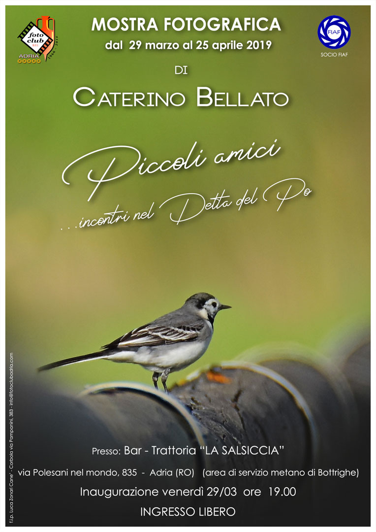2019-03-29 Caterino Bellato