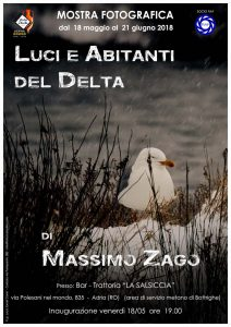 Personale di Massimo Zago